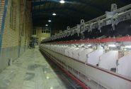 راه اندازی خط تولید نخ بی سی اف درشهرک صنعتی رازی